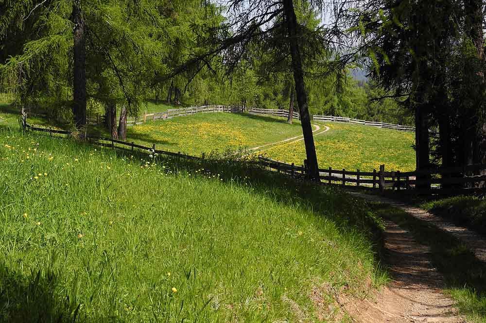 L'orgoglio del cavalcare e la voglia di escursionismo
